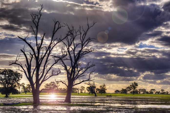 Warming-exaggerated flooding events can spread pathogens across agricultural fields which in turn can lead to contaminated crops on our dinner plates. Photo: Indigo Skies Photography, FlickrCC.