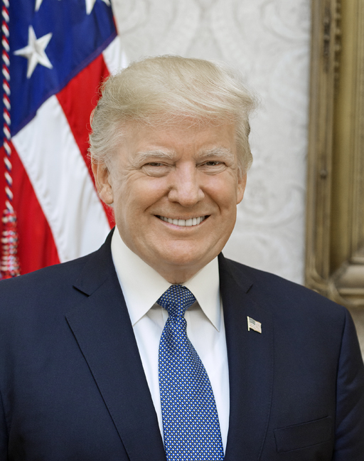 President Donald J. Trump. (Official White House photo by Shealah Craighead)
