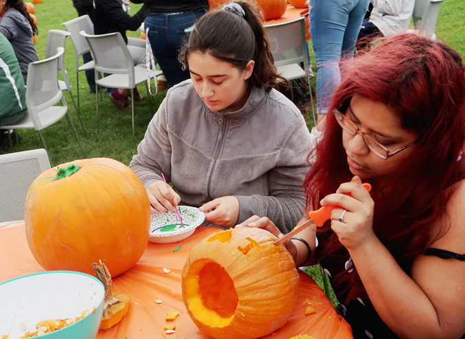Mount Saint Mary College students had a patch of good luck at the Student Government Association's pumpkin decorating event.