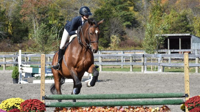 The SUNY New Paltz IHSA team had a great showing at Crosswinds Equestrian Center Saturday.