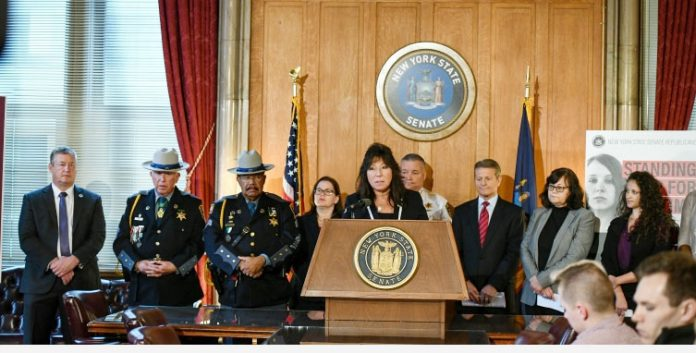 State Senator Susan Serino of Hyde Park, a member of the Republican minority in the upper house, Thursday announced legislation to protect victims and the public as the new state bail reforms are about to take effect in January.