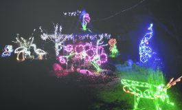 """The Orange County Department of Parks, Recreation and Conservation is pleased to announce the 11th annual """"Holiday Lights in Bloom"""" program which began on November 29th at the Arboretum in Thomas Bull Memorial Park."""