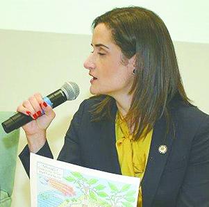 Dr. Irina Gelman