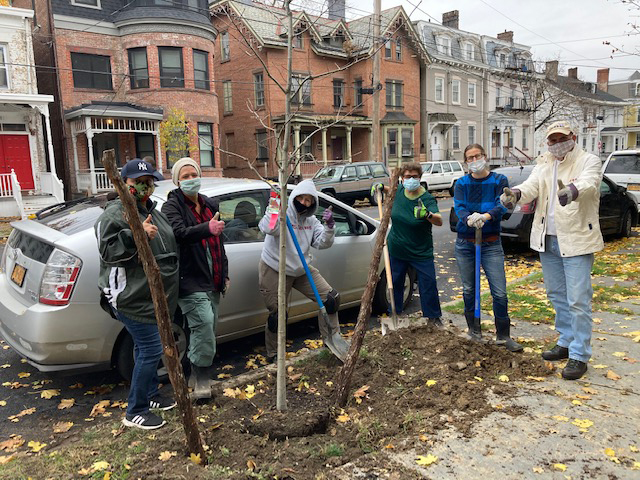 On Thursday, November 12, members from the Greater Parks Conservancy, Newburgh Conservation Advisory Council, Department of Small Interventions, Department of Public Works and City of Newburgh Ward 1 Councilwoman, Karen Mejia, planted 12 new trees on Liberty Street in the City of Newburgh.